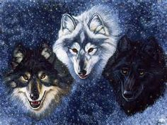 Fantasy images Wolves HD wallpaper and background photos (28046344)