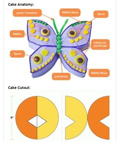 The ADD Kitchen Her Majesty's Birthday Baking Success! Kuchen Schmetterling The ADD Kitchen Her Majesty's Birthday Baking Success! Butterfly Birthday Cakes, Butterfly Party, Butterfly Cakes, Butterflies, Butterfly Cake Template, Cake Shapes, Cake Tutorial, Cute Cakes, Party Cakes