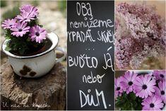 U nás na kopečku: Můj relax- bydlení a zahrada Mantra, Motto, Black Walls, Kids And Parenting, Funny Texts, House Design, Humor, Quotes, Quotations