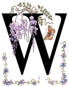 Wisteria And A Wanderer Butterfly Painting