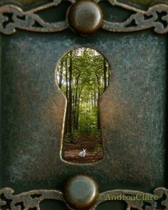 Magical lock & door