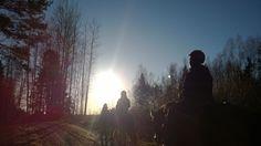 Wasa Wellnessin tykypäivä Stall Falisa 10.11.2017. #forestmagic #healingforest #forestenergy #horseenergy #sunnyday