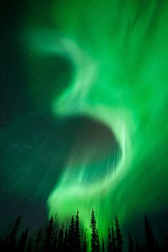 "~ Aurora Borealis, Kiruna, Sweden by Miles Morgan~~ Photographer quote: ""I named this for obvious reasons"" : - )Alike Witch nebula ! Northern Lights Norway, See The Northern Lights, Aurora Borealis, Beautiful Sky, Beautiful Landscapes, Northen Lights, Tornados, Natural Phenomena, Night Skies"