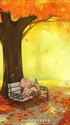 Charlie Brown and Snoopy -Autumn wallpaper Comics Peanuts, Peanuts Cartoon, Peanuts Snoopy, Charlie Brown Y Snoopy, Charlie Brown Quotes, Snoopy Und Woodstock, Dog Quotes Love, Funny Quotes, Snoopy Pictures