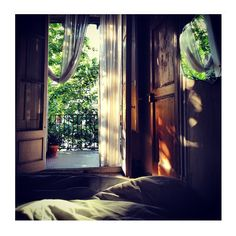 and the forest dreams eternally. - Nap bliss in Barcelona Woodlands Cottage, Cottage In The Woods, Forest Cottage, Misty Forest, Fern Forest, Back Doors, Cozy House, Color Themes, Decoration