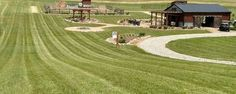 6 tips to a great lawn without using chemicals, gardening, go green, landscape, . Pergola Shade, Pergola Patio, Backyard, Green Lawn, Go Green, Pergola Pictures, Lawn Sprinklers, Drought Tolerant Plants, Green Landscape