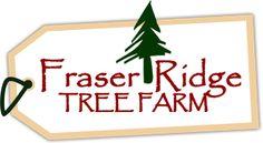Peltzer Pines Choose and Cut Christmas Tree Farms - A Season of ...