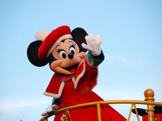 Disney World Parade and Character Dinner Tips