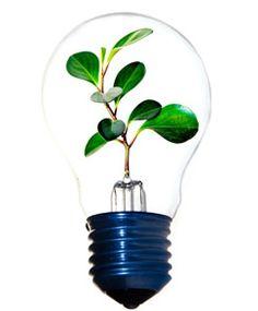 La innovación empresarial a través de la gestión estratégica