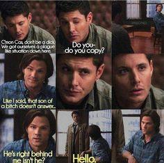 Sammy's so mad lol rip