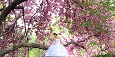 #sweetsixteen #quinces #photography, quinces photography, quinceanera, quinces photo shoot, quince ideas, sweet sixteen