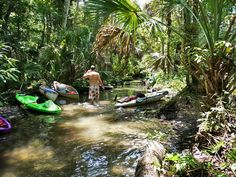 Visit Chassahowitzka River and springs.  A hard to find Florida Gem!