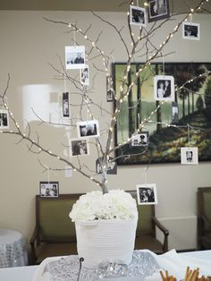 Photo tree centerpiece with snapshots of the couple over 6 decades. Made with natural branch set in florist foam and faux flowers at base. Ornaments are photos printed on plain paper and affixed to card stock with rubber cement with added bling and scrapbook embellishments. Hole punched at top and hung with metallic string. Battery operated lights wound around branches.