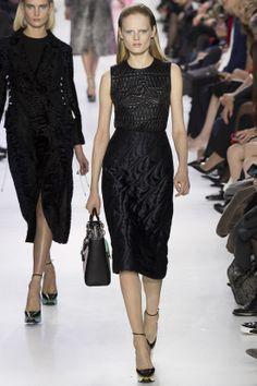 Défilé Christian Dior prêt-à-porter automne-hiver 2014-2015