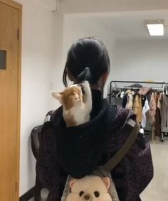 Kitten found a new plaything - Katzen - Cats Cute Cats And Kittens, I Love Cats, Crazy Cats, Kittens Cutest, Cute Funny Animals, Cute Baby Animals, Animals And Pets, Funny Cats, Cute Animal Videos