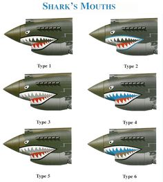 WWII P-40 Warhawk Shark Mouth Types this is for you John