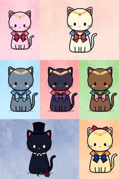 Sailor Kitties