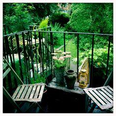 Soczyście zielony #balkon #Balcony