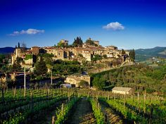 10 mins away While you're in the Chianti region, stop by this small, family-run winery in the medieval village of Montefioralle, near Greve.
