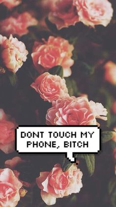 Don't touch my phone * No toques mi telefono, perra.