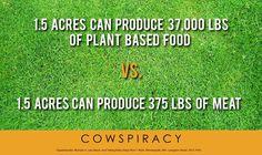 Cowspiracy, vegan