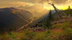 nature landscapes rivers hill flowers sky clouds sunset sunrise sunlight meadow trees forest scenic view streams