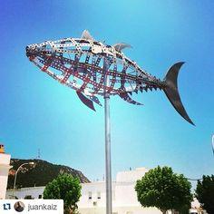 #Repost @juankaiz  #zaharaatunes #verano #summer #calorazo #beauty #atun #tatakideatun #tataki #cadizturismo @cadizturismo #estaes_cadiz #estaes_andalucia by cadizturismo
