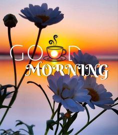 Morning Love Quotes, Good Morning Messages, Good Morning Greetings, Good Morning Wishes, Good Morning Images, American Flag Images, My Wife Quotes, Good Morning Today, Morning Inspiration