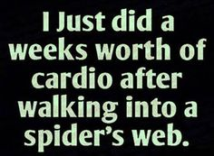 Had a great workout Funny, Gym, quotes, Spider, Work