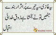 Allama Iqbal Iqbal Poetry, Sufi Poetry, Iqbal Shayari, Parveen Shakir, Allama Iqbal, Urdu Words, Urdu Quotes, Blue Whale, Muhammad