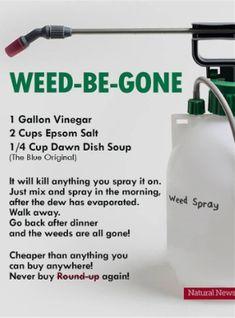Natural Weed Spray No Round-Up for your Organic Garden Herbicide free Specially for my gardening… Garden Yard Ideas, Lawn And Garden, Garden Landscaping, Garden Bed, Landscaping Ideas, Landscaping Borders, Box Garden, Tower Garden, Pink Garden