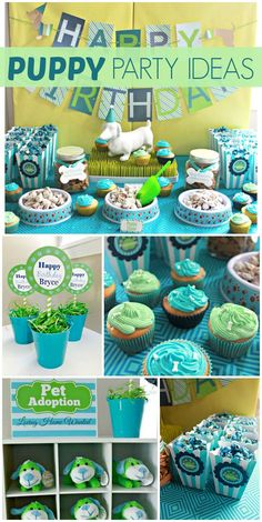 """An incredible Puppy themed boy birthday party in aqua, lime, and navy with cute treats and a """"Pet Adoption"""" Center! See more party planning ideas at CatchMyParty.com!"""