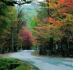 Iran - Land of Dreams:  Alang-darre Forest park, Gorgan - Golestan Province, #Iran (in Persian: پارک جنگلی النگ دره؛ زیباترین پارک شمال کشور, گرگان, استان گلستان)