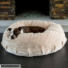 Animals Matter® Katie Puff® Orthopedic Luxury Dog Bed