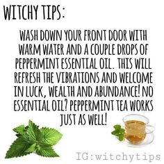 """""""Easy witchy tip for adding magick into some spring cleaning! Alternatively, match the essential oils with your purpose! Use sandalwood…"""" It might also deter mice: they apparently don't like mint Wiccan Witch, Magick Spells, Witchcraft Herbs, Witch Rituals, Green Witchcraft, Healing Spells, Reiki, Affirmations, Witchcraft For Beginners"""