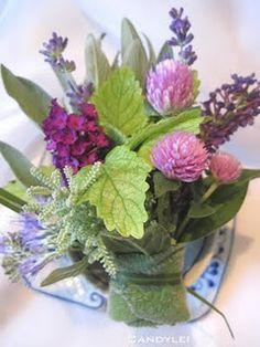 hidcote lavender, common sage, lemon balm, globe amarraths, lamb's ears, lavender cotton, and butterfly bush