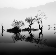 (Between The Parenthesis) - A BW shot from my Lohas river shot a couple weeks ago. The fog on the water was beautiful and really helped to simplify the normally pretty busy scene.