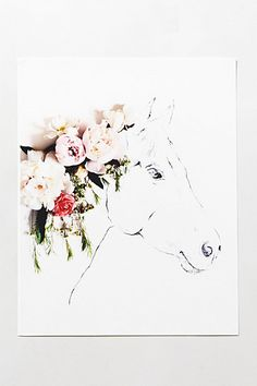 Uno The Horse Print #anthropologie…sketches layered with fresh blooms and photographed.  Gorgeous!