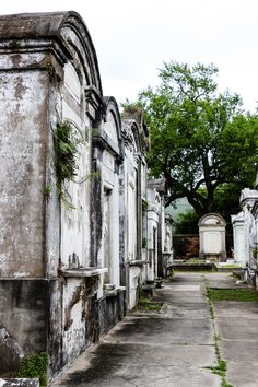 10 Quirky Things To Do in New Orleans - cemetery tours are one of the many unique things you can do in NOLA! Tours New Orleans, New Orleans Vacation, Visit New Orleans, New Orleans Travel, New Orleans Louisiana, Louisiana History, New Orleans Bayou, Nola Vacation, Louisiana Gumbo