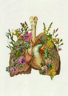 For the first time in what seems to be almost half of forever, I would really love for my lungs to be reminded of what it is to breathe again.