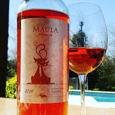Cuando el invierno te regala un día de primavera ... Maula Rosé L'amour un rosado de Malbec 2014 de @margotucovalley . #wine #winelover #winepic #malbec #maula #rose #rosado #vino #tupungato #valledeuco #ucovalley #Mendoza #instawine