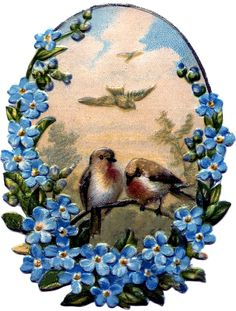 Birds with Forget Me Nots Image - Pretty! - The Graphics Fairy Vintage Ephemera, Vintage Cards, Vintage Postcards, Vintage Images, Graphics Fairy, Pretty Birds, Beautiful Birds, Vintage Flowers, Blue Flowers