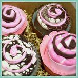 Very cute - burp cloths in cupcake roll by Little Patridge