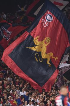 Grifoni! Genoa Cfc, Ultras Football, Cricket, Grande, Red, Beautiful, Faces, Cricket Sport