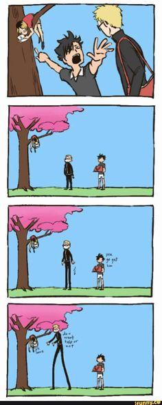 Tsuki , kuro and kenma on the tree - Haikyuu!!