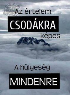 Read Idézetek from the story Az új lány (SZJG) by DemjenMikka (Bogi XD) with 685 reads. Jokes Quotes, Life Quotes, Qoutes, Fitness Motivation, About Me Blog, Wholesome Memes, Funny People, Funny Cute, Quotations