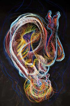 Billedresultat for fred hatt hands Human Figure Drawing, A Level Art, Drawing Artist, Ap Art, Anatomy Art, Art Plastique, Art Studios, Collage Art, Art Inspo