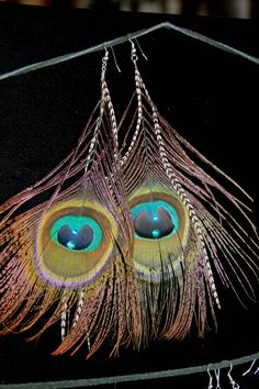 Peacock Earring Bohemian Natural Feather Hippie by LostCoastArts, #peacock Feather#earrings#greatgift