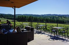We took a drive west to Sherwood, Oregon to tour the fancy new tasting room at Ponzi Vineyards. Sherwood Oregon, Oregon Wine Country, Oregon Washington, Tasting Room, Portland, Vineyard, Tours, Patio, Places