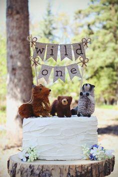 Wild One type theme; outdoorsy; brown, orange purple colors! #birthdaycakes